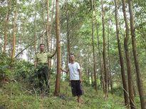 Nguyên Bộ trưởng Lê Huy Ngọ: Cần tin vào dân khi giao đất rừng lâu dài