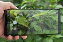 Cận cảnh Galaxy Note 8 vừa xuất hiện tại Việt Nam