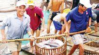 Xuất khẩu thủy sản thích ứng bối cảnh mới - Nâng cao chất lượng, đa dạng thị trường