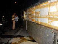 TP Hồ Chí Minh: Phát hiện xe chở 3,2 tấn chim cút thối
