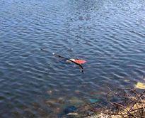 Phát hiện thi thể người đàn ông nổi trên mặt nước ở Nghệ An