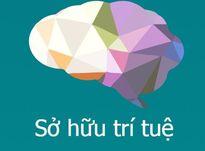 Khởi tạo môi trường sở hữu trí tuệ tại Việt Nam
