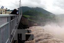 Ứng phó với ảnh hưởng của áp thấp nhiệt đới