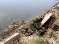 Thị xã Hoàng Mai: Yếu kém hạ tầng vùng nuôi tôm