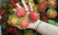 4 công dụng làm đẹp của trái chôm chôm khiến vạn người mê
