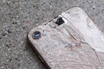 Phát hiện những thay đổi quan trọng khi 'mổ bụng' chiếc iPhone 8