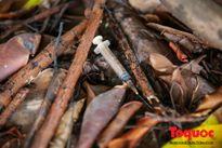 Bơm kim tiêm lấp ló sau công viên hồ Ba Mẫu