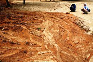 Chủ đầu tư đưa phương án chống bùn, đất đỏ chảy xuống biển Tiên Sa