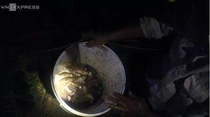 Clip sau trận mưa, người dân Hà Nội đào hố, bắt 10kg cá rô đồng trong 1 đêm