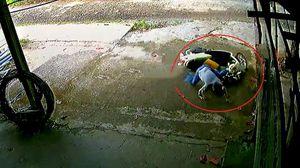 Người lớn bất cẩn để trẻ vặn ga xe vọt đi cực nguy hiểm