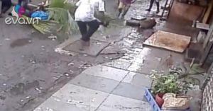 Nữ MC bị cây dừa rơi xuống đè chết khi đi đường, nguyên nhân phía sau khiến ai cũng phẫn nộ