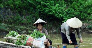 Điện Biên: Giữa mùa lũ, dân liều mình vượt suối nhờ dây thép mỏng