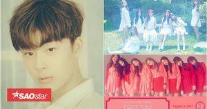 Girlgroup 'em gái' 4Minute phải mượn trai đẹp Produce 101 để gây chú ý?