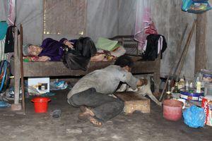 Tận cùng khốn khổ của mẹ già hơn 90 tuổi và 3 con điên dại ở Phú Thọ