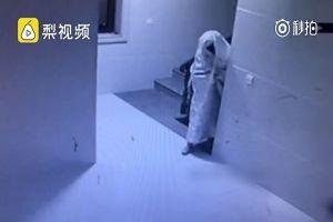 Video tên trộm giả ma mò vào tòa chung cư