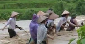 Clip: Dàn hàng đứng giữa dòng lũ cuồn cuộn vớt củi dù rất nguy hiểm