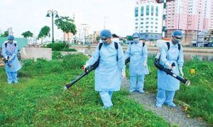Tăng cường triển khai các biện pháp phòng chống dịch sốt xuất huyết tại Hà Nội