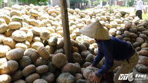 Nông dân gửi tiết kiệm 1.826 tỷ đồng trong 7 tháng đầu năm