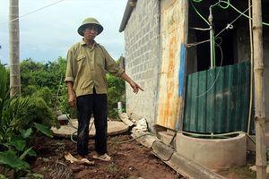 Hiệu quả của Dự án Hỗ trợ nông nghiệp các bon thấp tại Nam Định