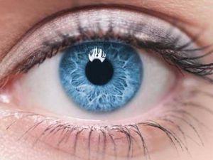 Vì sao có màu mắt xanh?