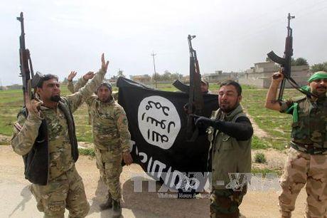 Bosnia-Herzegovina vien tro 500 tan dan cho Iraq chong IS - Anh 1