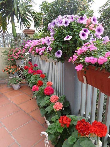 Tinh yeu 'an hoa, ngu cung hoa' cua co giao Quang Ninh - Anh 3