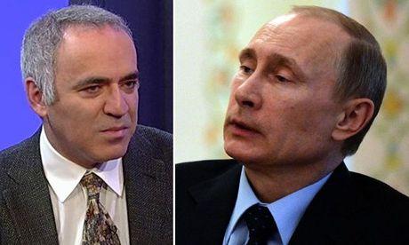 Vua co Kasparov doi chieu bi Tong thong Putin - Anh 1