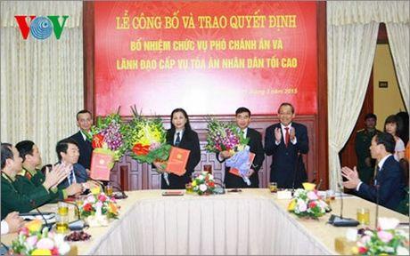 Toa an Nhan dan Toi cao bo nhiem Pho Chanh an moi - Anh 2