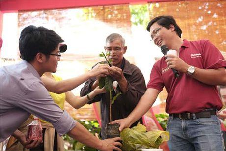 Ho tro 4 trieu cay ca phe giong cho nong dan Tay Nguyen - Anh 2