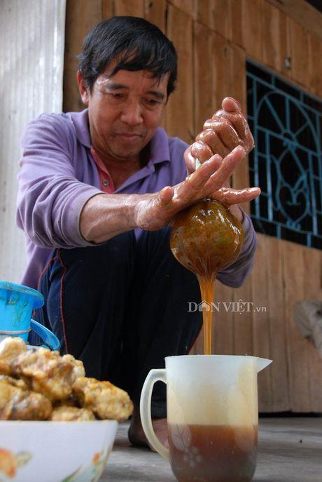 Nghe gac keo ong vung rung U Minh dat Mui - Anh 3