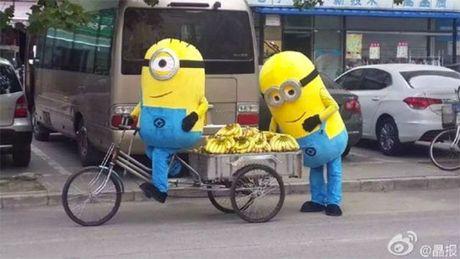 """""""Minions"""" ban chuoi bi canh sat """"hoi tham"""" - Anh 2"""