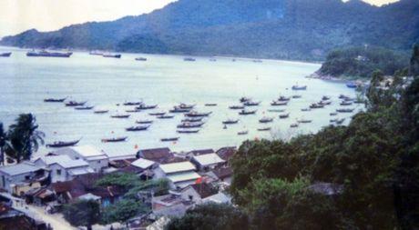 Cu Lao Cham- Hon dao xanh quyen ru cua du lich Hoi An - Anh 11