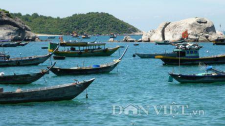 Cu Lao Cham- Hon dao xanh quyen ru cua du lich Hoi An - Anh 13