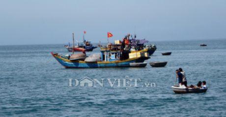 Cu Lao Cham- Hon dao xanh quyen ru cua du lich Hoi An - Anh 2