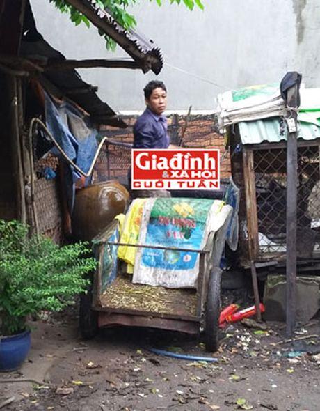 Hau van buon tham cua chu ngua mot thoi lung lay phai dat vo, con song bam nghia trang - Anh 1