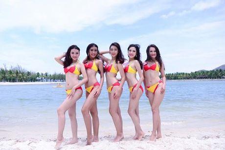 Bikini Vietjet se tai xuat cung Hoa Hau Hoan Vu Viet Nam - Anh 7