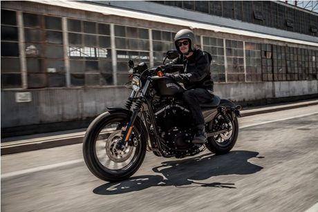 Harley Davidson VN day manh ban mau xe cho nguoi co voc dang nho - Anh 1