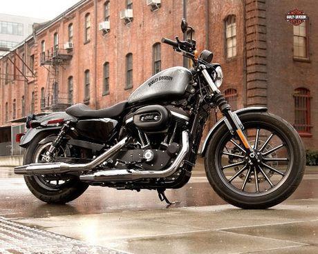 Harley Davidson VN day manh ban mau xe cho nguoi co voc dang nho - Anh 2