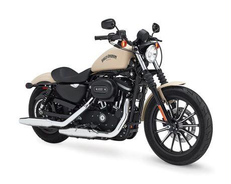 Harley Davidson VN day manh ban mau xe cho nguoi co voc dang nho - Anh 3