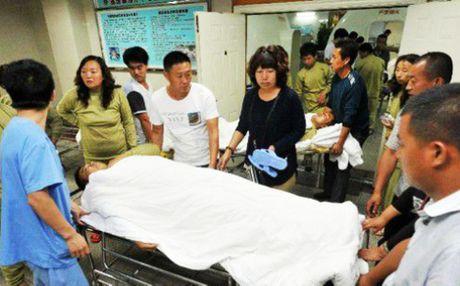 Trung Quoc: Tre ho ra mau, dong vat chet la liet vi ro ri khi amoniac - Anh 3
