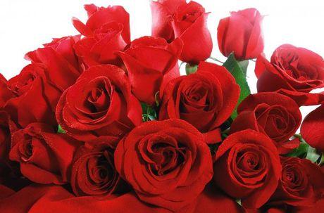 """10 dieu thu vi ve """"Ngay le tinh nhan"""" Valentine - Anh 2"""