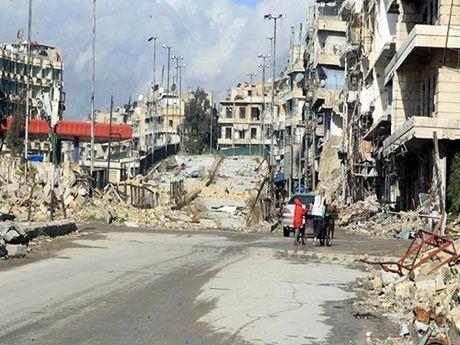 Tinh hinh Syria: Vien tro nhan dao can mo rong den Aleppo - Anh 1