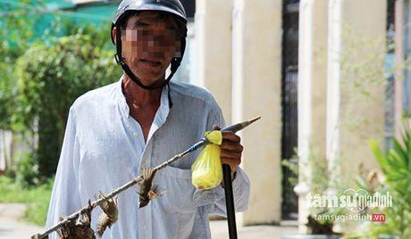 'Tho san' tiet lo cong nghe vo nhan tinh bat 200 chim se moi ngay bang DTDD - Anh 1