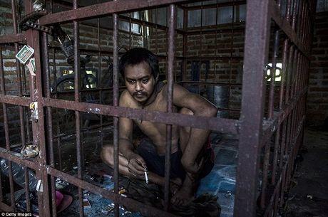 Soc: Ngoi lang co hang tram nguoi tam than o Indonesia - Anh 4