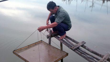 Nguy co thieu tom nguyen lieu che bien xuat khau do han, man - Anh 1