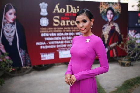 Truong Thi May trinh dien lai ao dai tung thi Miss Universe 2013 - Anh 1