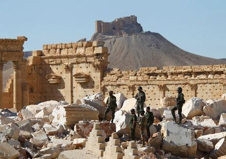 Tim thay ho chon tap the tai Palmyra - Anh 1