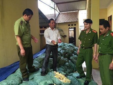 Phat hien 22 tan mang tam hoa chat doc hai tai Bac Giang - Anh 1