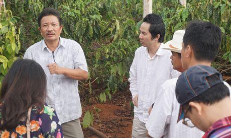 Nestle phoi hop cung nong dan 'giai khat' cho cay ca phe - Anh 2