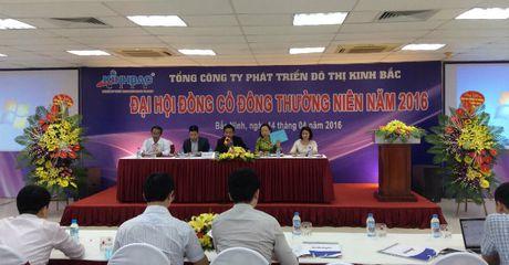 DHDCD KBC: Tin don va TTCK khong tot khien KBC chua phat hanh duoc co phieu gia 15.000 dong/cp - Anh 1